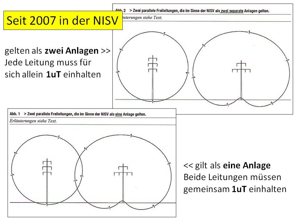 NISV-1
